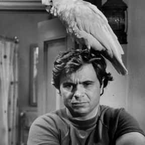 Baretta is listed (or ranked) 21 on the list The Best Live-Action TV Shows Starring Animals