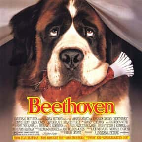 Beethoven is listed (or ranked) 7 on the list The Greatest Dog Movies Of All Time