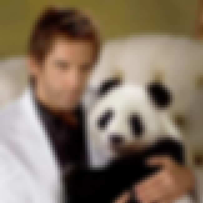 Ben Stiller is listed (or ranked) 2 on the list The Top 17 Photos of Celebrities with Pandas