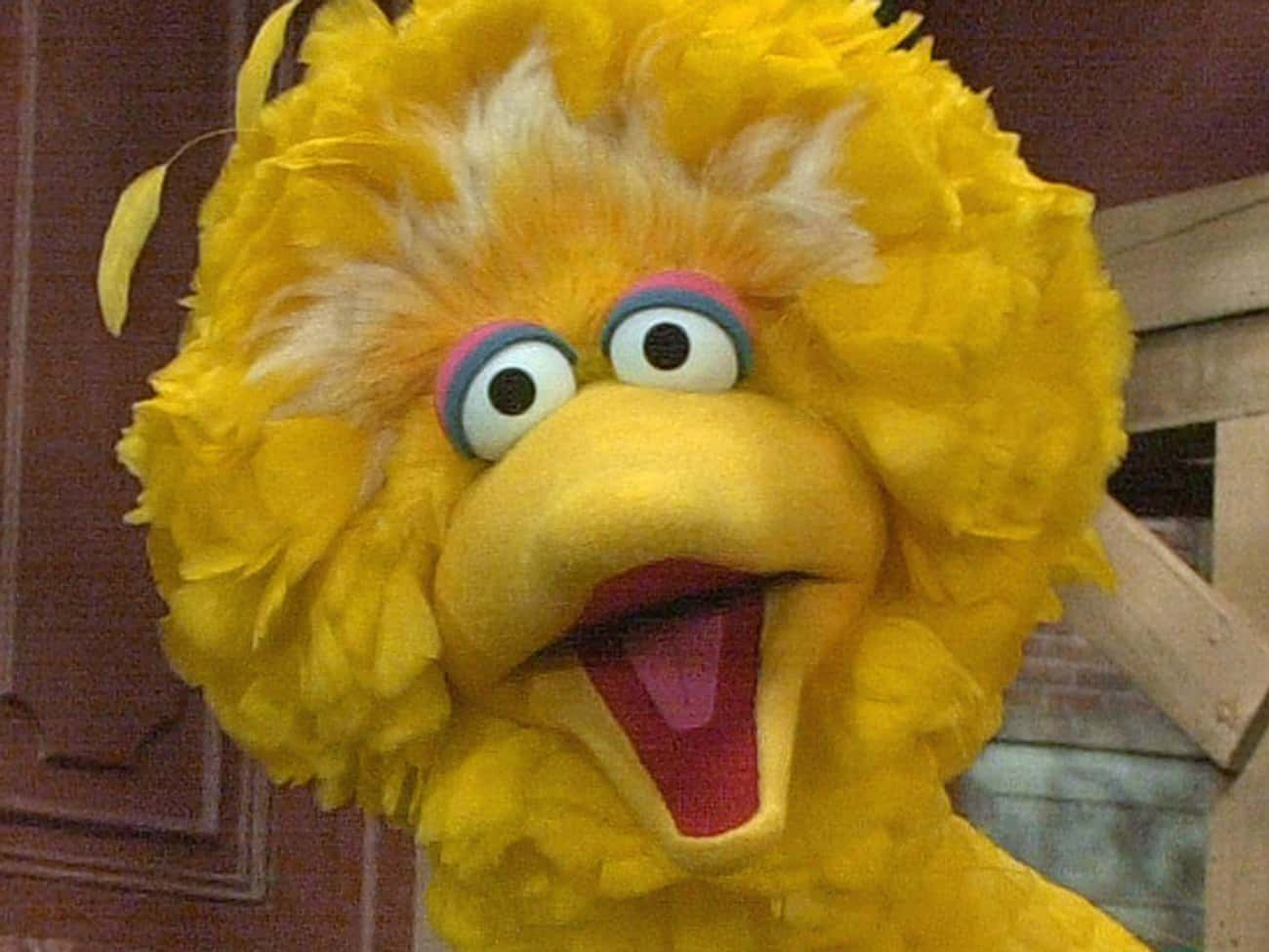 Big Bird Is Six Years Old is listed (or ranked) 4 on the list 17 Fictional Characters Whose Ages You Were Totally Wrong About