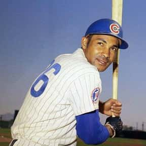 Billy Williams is listed (or ranked) 5 on the list The Best Chicago Cubs Of All Time