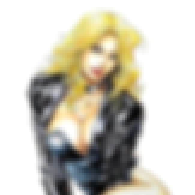Black Canary is listed (or ranked) 1 on the list The Sexiest Female Super Hero Figures