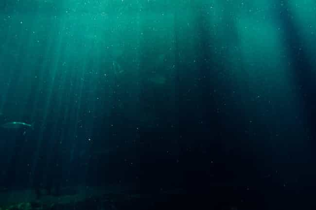 Black Sea is listed (or ranked) 2 on the list The Darkest Secrets Behind Famous Bodies Of Water Around The World