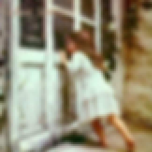 Violent Femmes is listed (or ranked) 1 on the list The Best Violent Femmes Albums of All Time