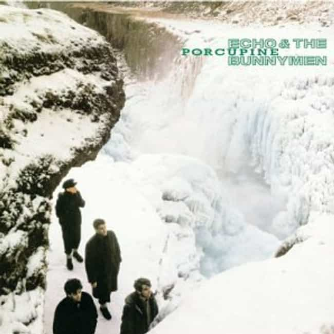 Porcupine is listed (or ranked) 3 on the list The Best Echo & The Bunnymen Albums of All Time