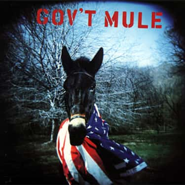 Gov't Mule is listed (or ranked) 2 on the list The Best Gov't Mule Albums of All Time