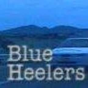 Blue Heelers is listed (or ranked) 12 on the list All TV Shows That Have Run For 300+ Episodes, Ranked