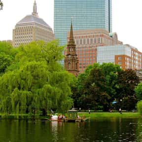 Boston is listed (or ranked) 14 on the list The Best US Cities for Live Music