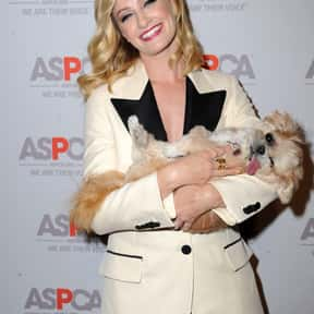 Beth Behrs is listed (or ranked) 11 on the list The Most GorgeousGirls on Primetime TV