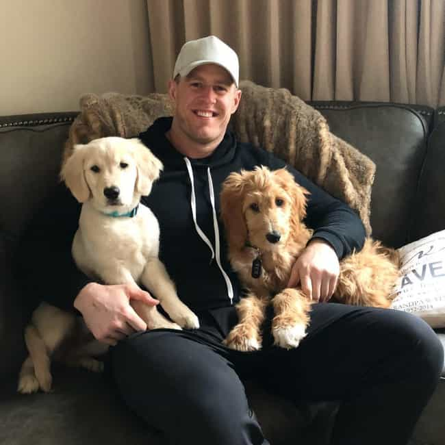 J. J. Watt is listed (or ranked) 4 on the list Adorable Photos Of NFL Players With Tiny Dogs