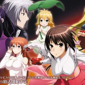 Sekirei is listed (or ranked) 5 on the list The Best Anime Like To Love-Ru