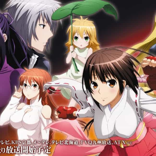 Sekirei is listed (or ranked) 4 on the list 15+ Good Anime Like High School DxD