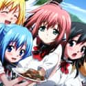 Heaven's Lost Property is listed (or ranked) 4 on the list The Best Anime Like Sekirei