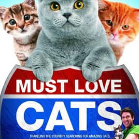 Must Love Cats is listed (or ranked) 7 on the list The Greatest TV Shows About Cats