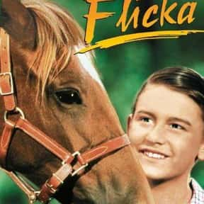 My Friend Flicka is listed (or ranked) 19 on the list The Best Horse Racing Movies
