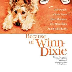 Because of Winn-Dixie is listed (or ranked) 12 on the list The Best Movies With A Little Girl Protagonist