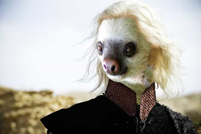 Viserys Targaryen is listed (or ranked) 1 on the list 13 Game of Thrones Characters as Sloths