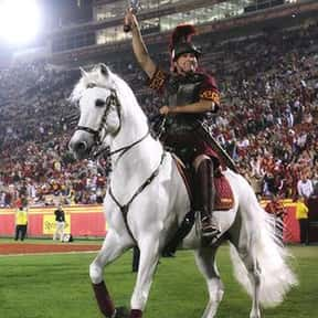 USC Trojans is listed (or ranked) 22 on the list The Best Sport Team Names