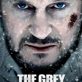 The Grey is listed (or ranked) 5 on the list The Best Snowy Thriller Movies, Ranked