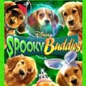 Spooky Buddies is listed (or ranked) 49 on the list The Greatest Dog Movies of All Time