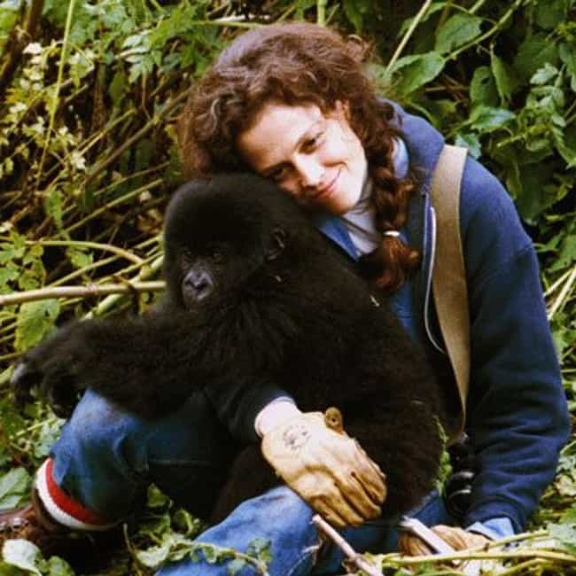 Dian Fossey is listed (or ranked) 2 on the list The Best Female Scientists in Film