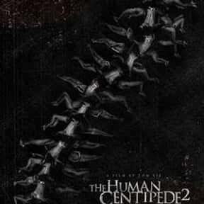The Human Centipede 2 (Full Se is listed (or ranked) 22 on the list The Most Gratuitous Torture P*rn Movies That Are Undeniably Sadistic