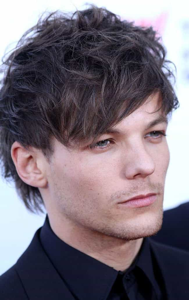 Louis Tomlinson is listed (or ranked) 1 on the list 14 Celebrities Who Tragically Lost Their Siblings Young