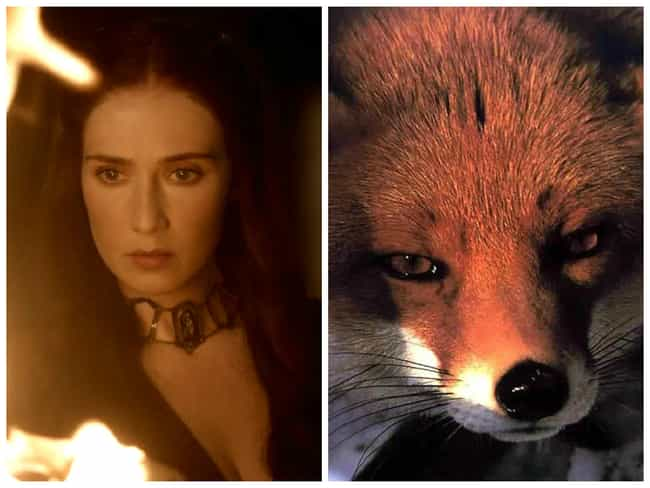 Melisandre is listed (or ranked) 4 on the list Game of Thrones Characters and Their Animal Counterparts