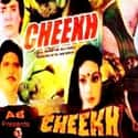 Cheekh is listed (or ranked) 8 on the list The Best Hindi Horror Movies