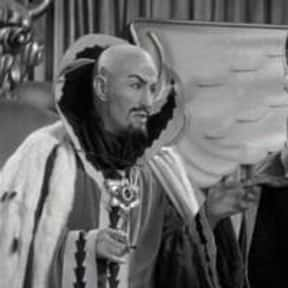 Zogi, the High Priest is listed (or ranked) 9 on the list List of Flash Gordon Characters