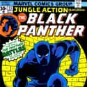 Jungle Action is listed (or ranked) 12 on the list The Best Black Panther Versions Of All Time