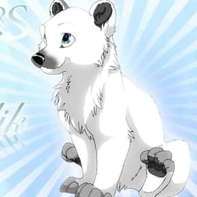 Kallik is listed (or ranked) 8 on the list The Best Fictional Polar Bears of All Time