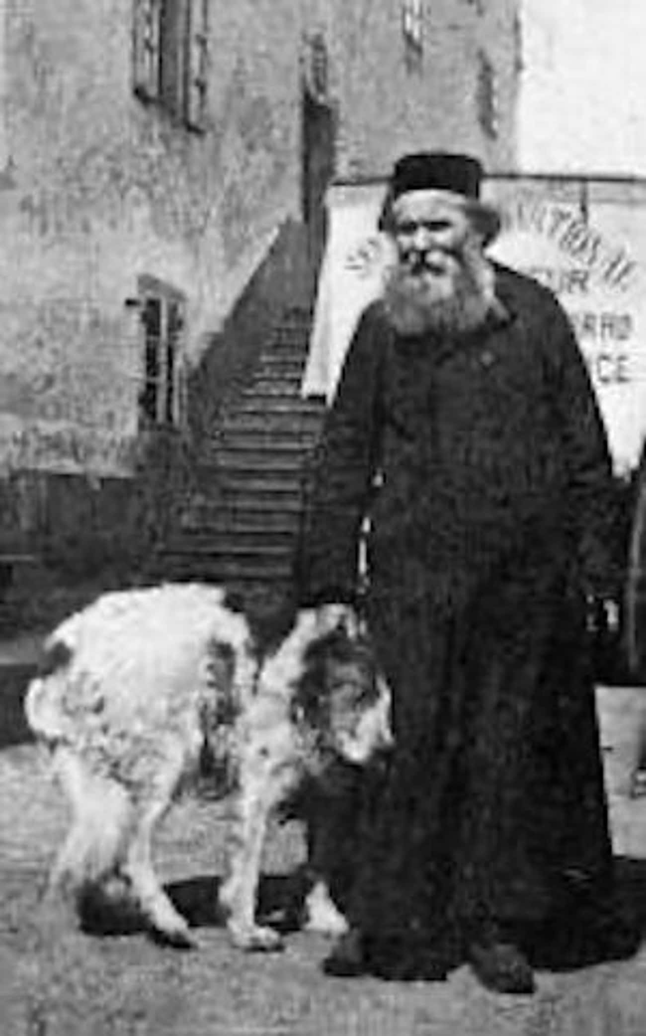 St. Bernard (c. 1900) is listed (or ranked) 1 on the list 19 Fascinating Photos Of What Dog Breeds Used To Look Like