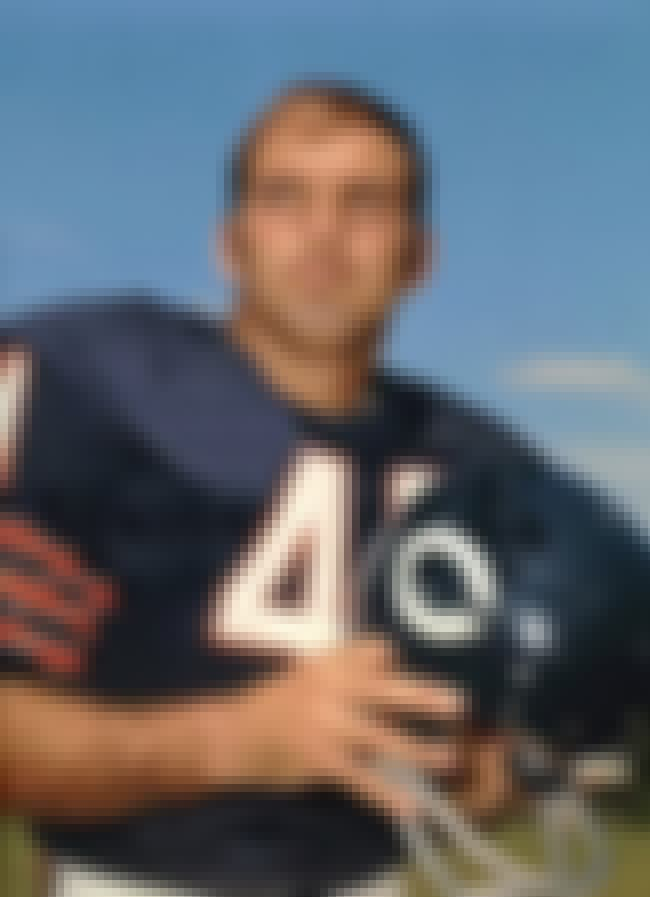 Brian Piccolo is listed (or ranked) 5 on the list Famous People Who Died of Testicular Cancer
