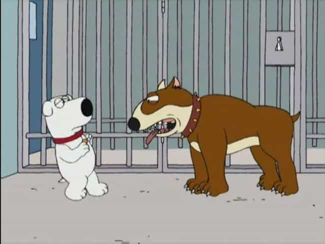 Brian: Portrait of a Dog is listed (or ranked) 4 on the list The Best Brian Episodes of 'Family Guy'