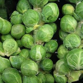 Brussels sprout is listed (or ranked) 22 on the list The Most Delicious Thanksgiving Side Dishes