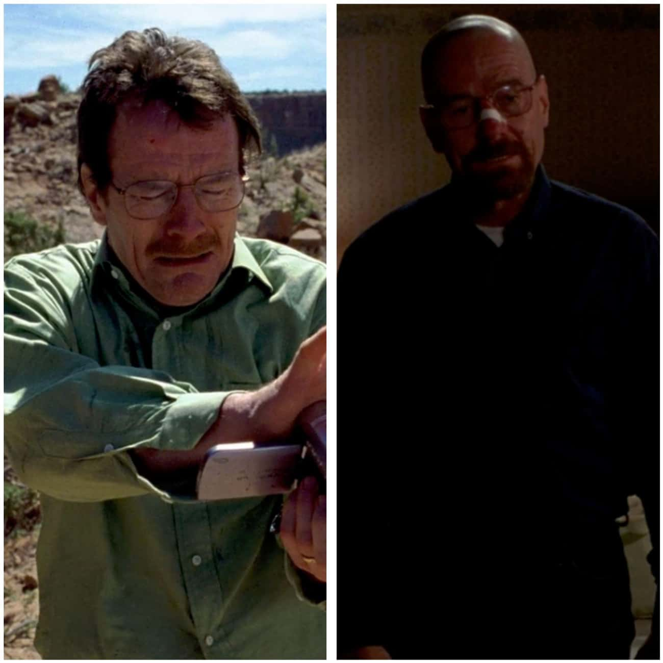 Bryan Cranston (Walter White)