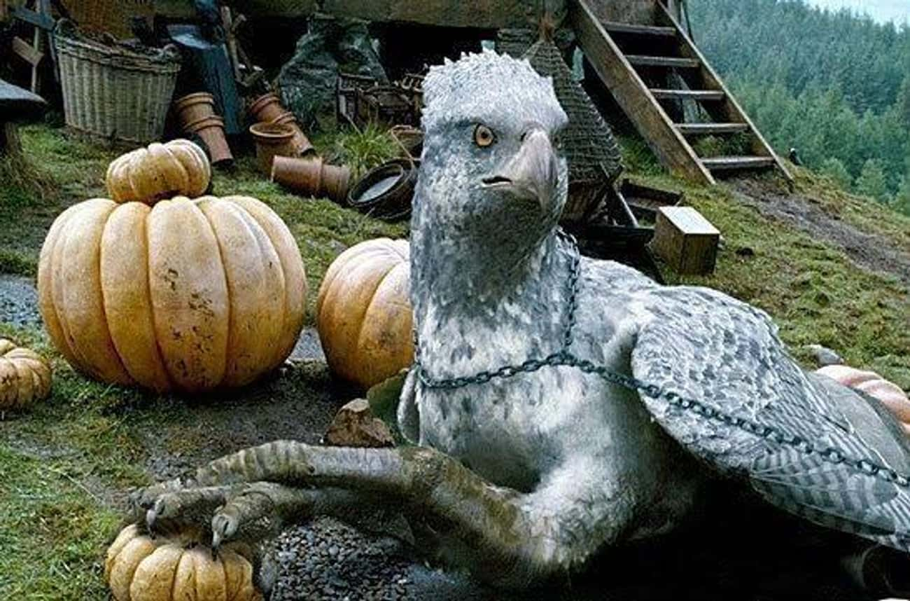 Buckbeak is listed (or ranked) 1 on the list The Luckiest Characters In The 'Harry Potter' Film Franchise