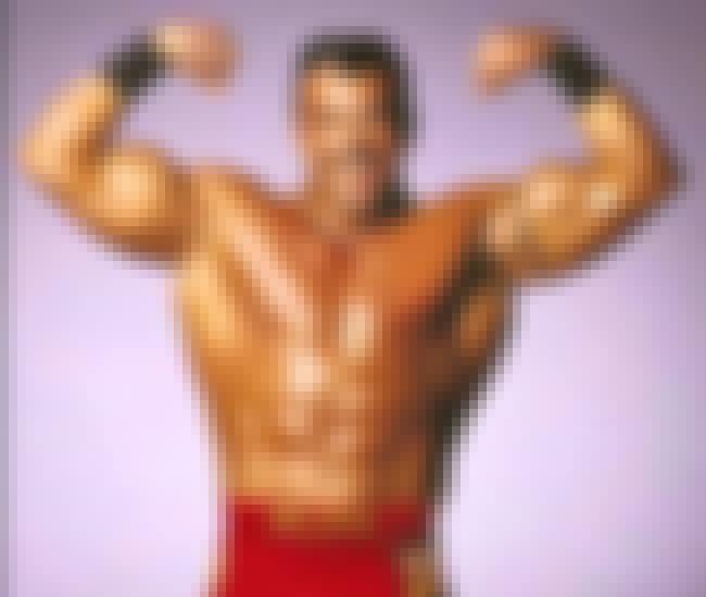 Buff Bagwell is listed (or ranked) 6 on the list 14 Pro Wrestlers Who've Done Porn