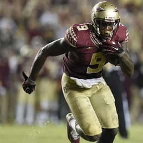 Karlos Williams is listed (or ranked) 12 on the list The Best Florida State Seminoles Running Backs of All Time
