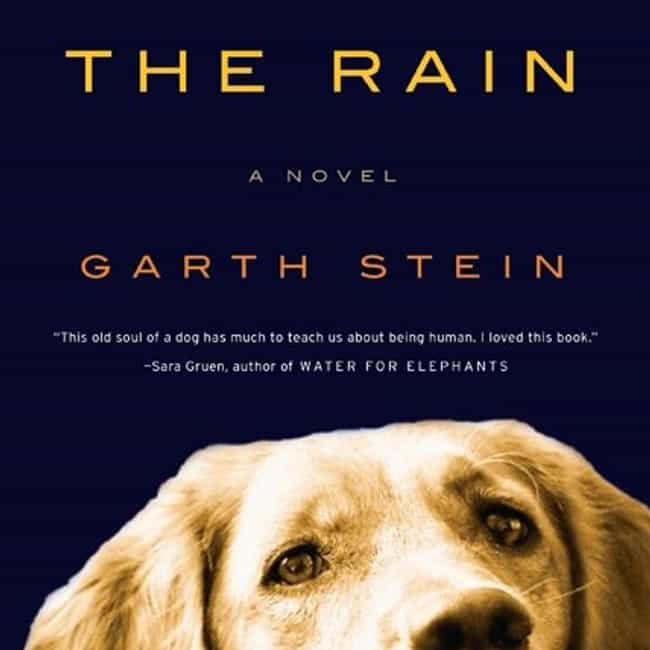 The Art of Racing in the Rain is listed (or ranked) 2 on the list The Top 10 Books to Make You Feel Good