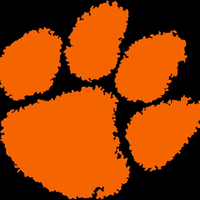 Clemson Tigers football is listed (or ranked) 1 on the list The Best ACC Football Teams