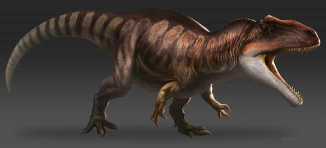 Giganotosaurus is listed (or ranked) 1 on the list The Scariest Types of Dinosaurs Ever to Walk the Earth
