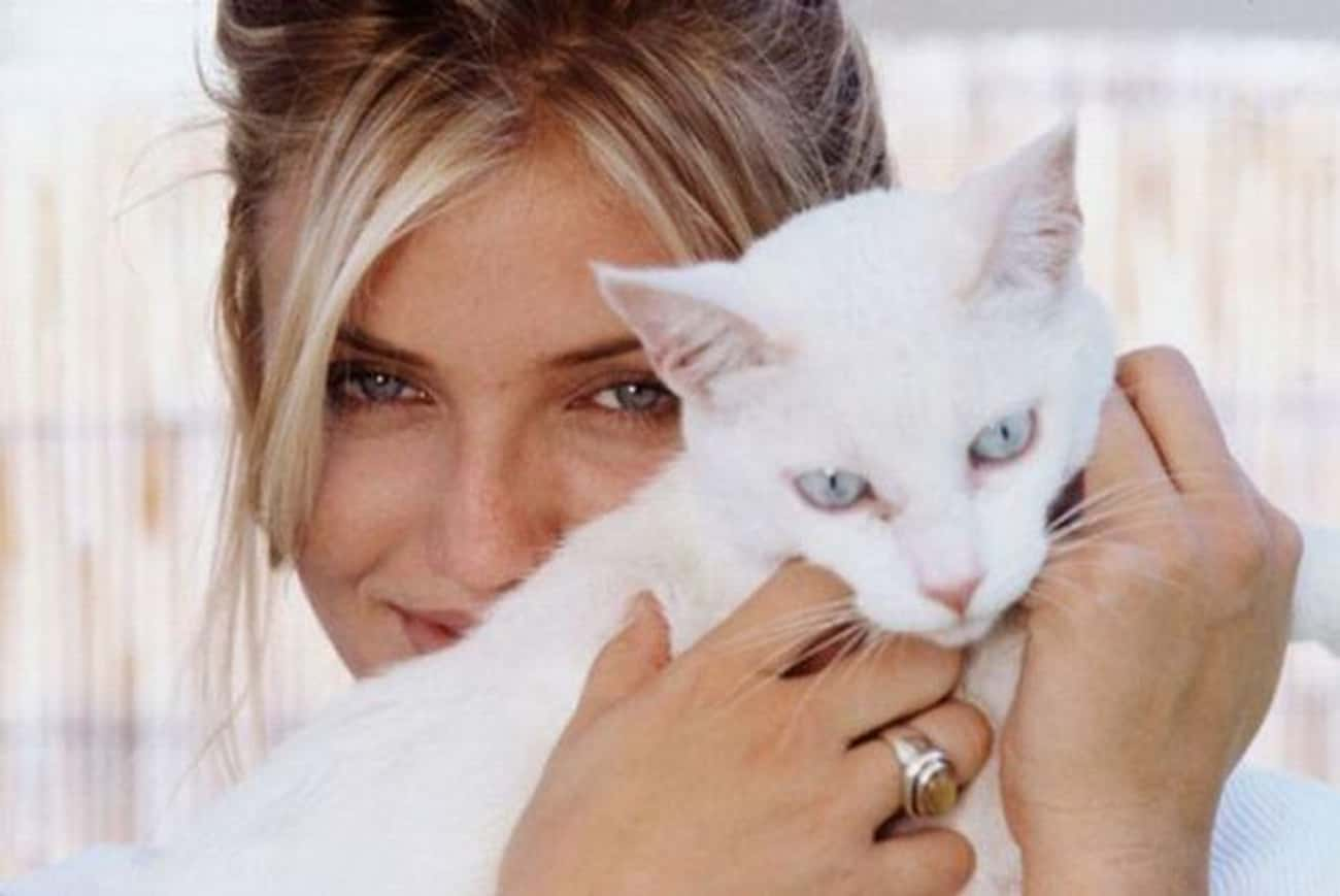 Cameron Diaz is listed (or ranked) 1 on the list 75+ Celebrities Who Are Cat People