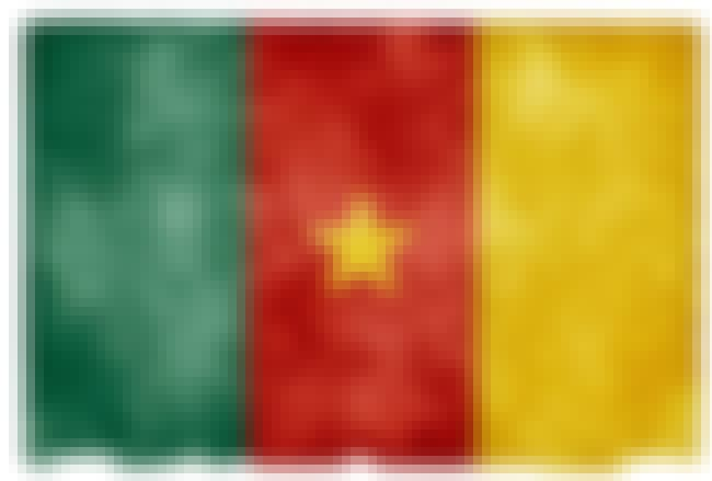 Cameroon is listed (or ranked) 7 on the list The Countries In Africa