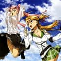 Highschool of the Dead is listed (or ranked) 39 on the list The Best Anime Series of All Time