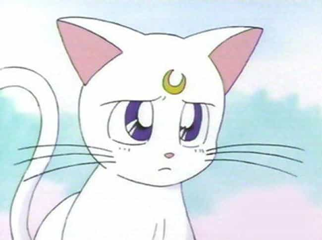 Artemis is listed (or ranked) 3 on the list Who's Your Ideal Anime Partner Based On Your Zodiac Sign?