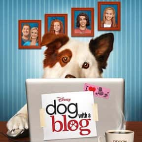 Dog With a Blog is listed (or ranked) 17 on the list The Best Live-Action TV Shows Starring Animals