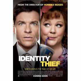 identity thief rankings amp opinions