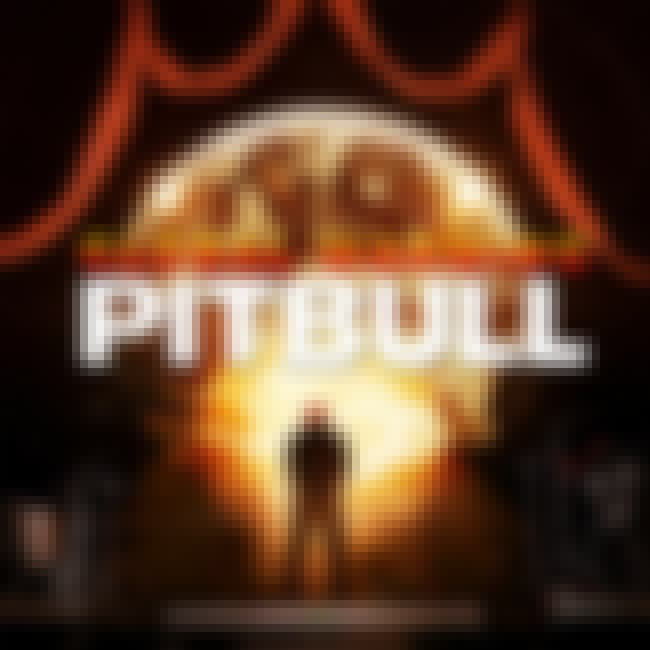 Global Warming is listed (or ranked) 2 on the list The Best Pitbull Albums of All Time